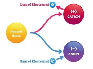 Positive and Negative Ion